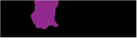 logo-executive-process.png
